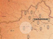 塔里木油田