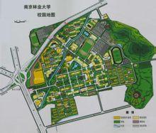 南京林业大学---校园地图