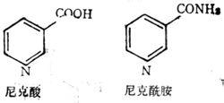 水溶性维生素B5(尼克酰胺)化学结构式
