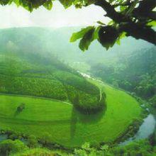 多瑙河景色