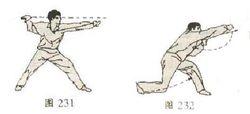 八步螳螂拳